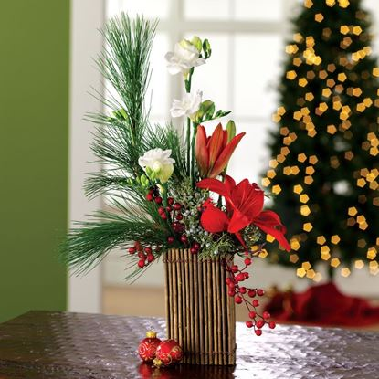 "Picture of SCH-012 ""Holiday splendor """