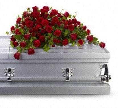"Picture of F-029 ""Red rose casket"""